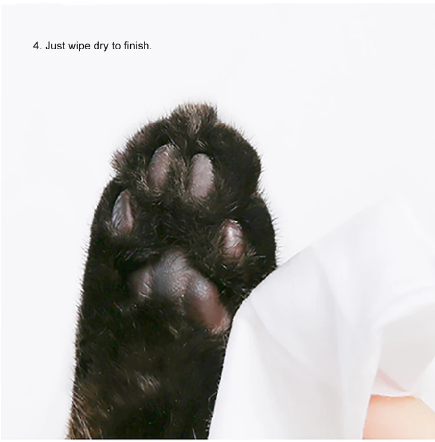 Pet Paw Cleansing Foam - Unscented - Catoro Cat Cafe