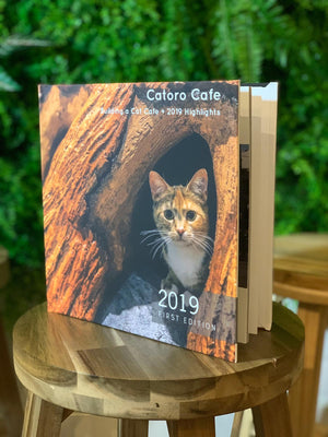 Catoro Cafe - Building a Cat Cafe + 2019 Highlights (First Edition photo book) - Catoro Cat Cafe