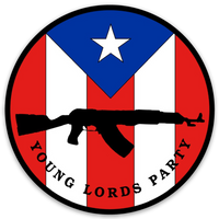 Young Lords Party - Magnet