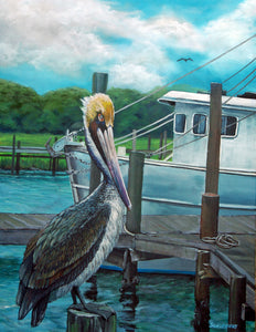 Resting Brown Pelican: Original Fine Art Bird Painting