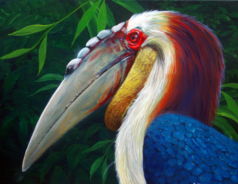Hornbill: Original Fine Art Bird Painting