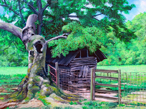 Old Oak Tree and Cotton Shed: Art and Giclée Print