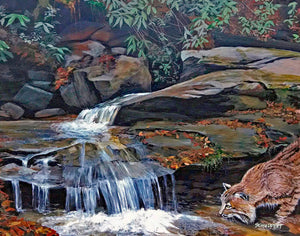 Wildcat Wayside Falls: Art and Giclée Print