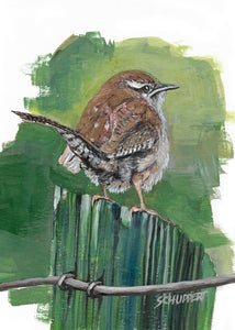 Wren on Fence: Original Acrylic Painting