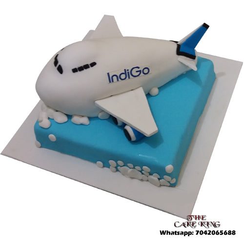 Aeroplane Birthday Cake - The Cake King