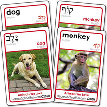 Load image into Gallery viewer, Hebrew-Vocabulary-4-pack-A123H