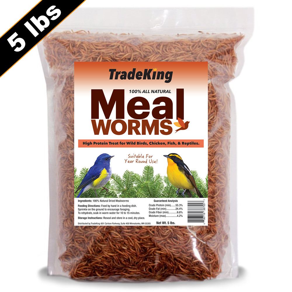 5 lb Bulk Dried Mealworms for sale