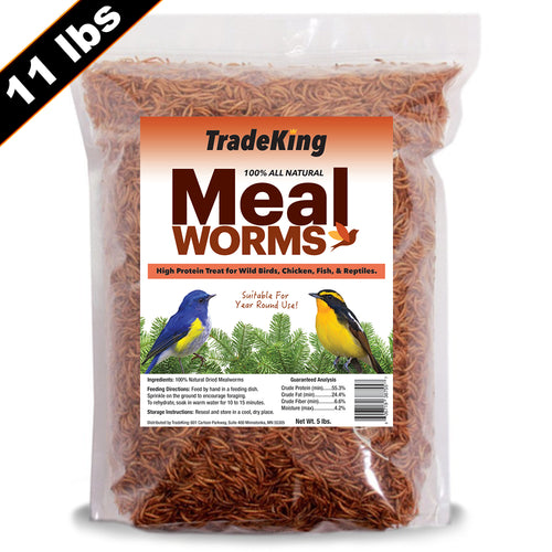 11 lb Bulk Dried Mealworms