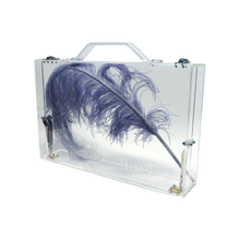 Load image into Gallery viewer, CARMEN CLEAR LUCITE Briefcase