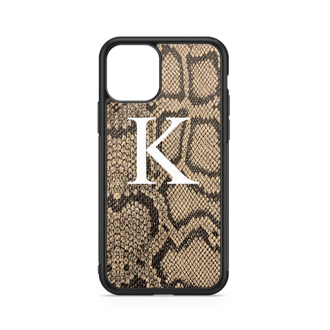 BIG INITIAL PYTHON BACKGROUND CASE