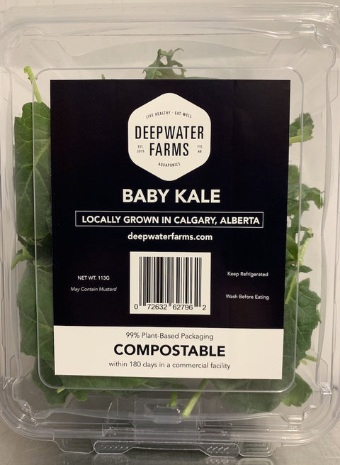 Baby Kale | 0.25 lbs - Cultivatr - Farm to Table