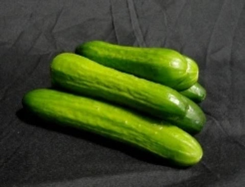 Local Cucumbers-Mini | 1 lbs Package - Cultivatr - Farm to Table