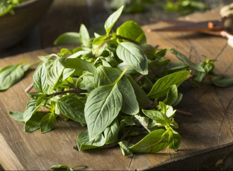Local Fresh Thai Basil | 28 grams - Cultivatr - Farm to Table