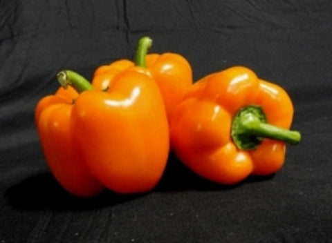 Local Peppers -Orange Bell | 1 Medium Pepper - Cultivatr - Farm to Table