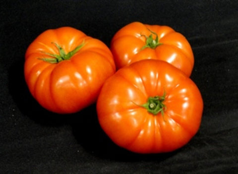 Local Tomatoes - Beefsteak | 1 lb - Cultivatr - Farm to Table