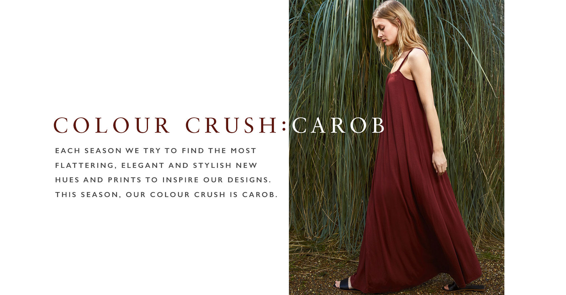 Colour Crush: Carob