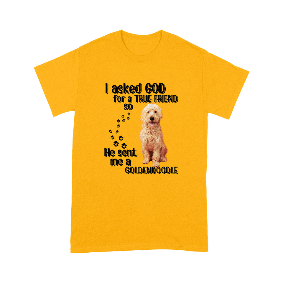 I Asked God For A True Friend So He Sent Me A Goldendoodle T shirt