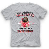 Dachshund I Asked God For A True Friend So He Sent Me A Dog T shirt
