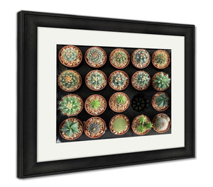 Framed Print, Variety Of Small Beautiful Cactus In The Pot Seen From Top - Fast/Free US Shipping