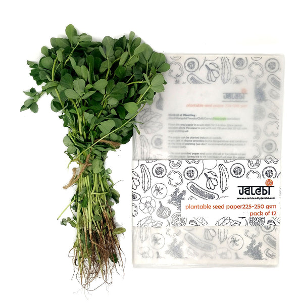 Basil Plantable Seed Cover Paper