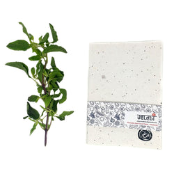 Basil Plantable Seed Cover Paper-Notebook