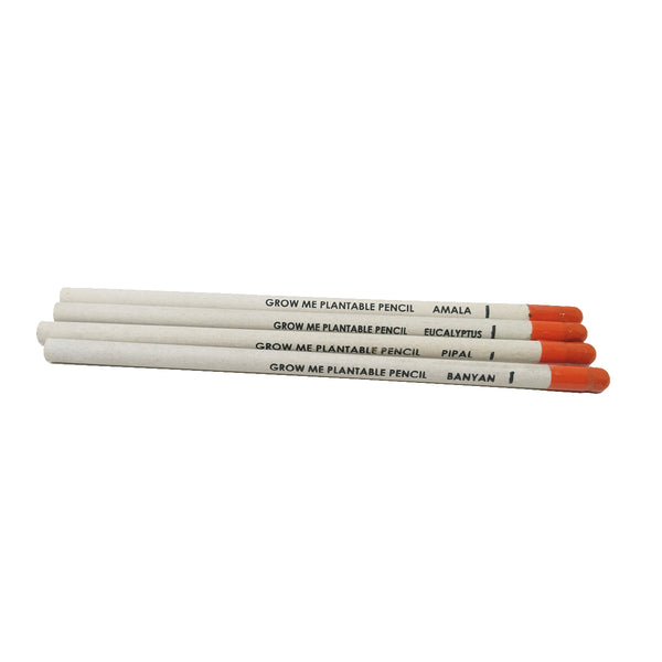 Ecoseed Plantable pencils