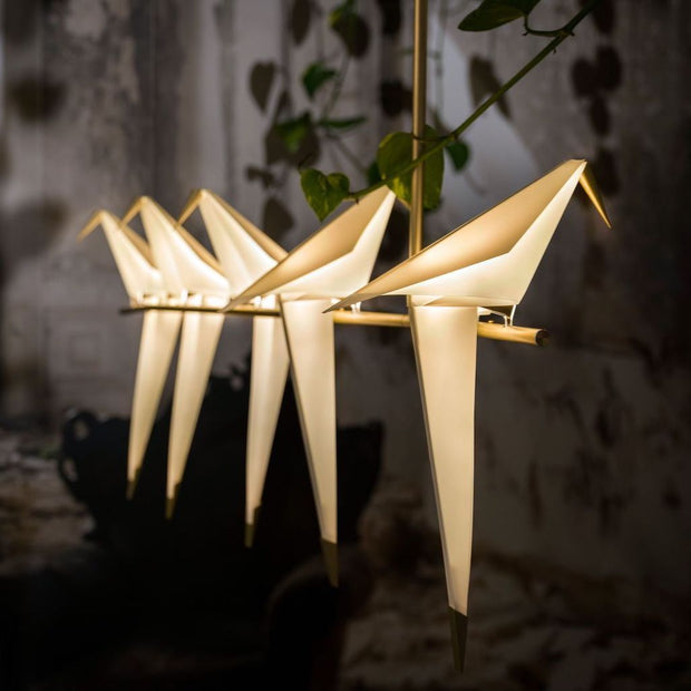 Perch Light Branch, [Molecule Design]