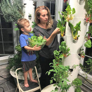 Tower Garden Family Garden