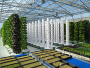 Tower Garden Community Garden (12 towers), [Molecule Design]