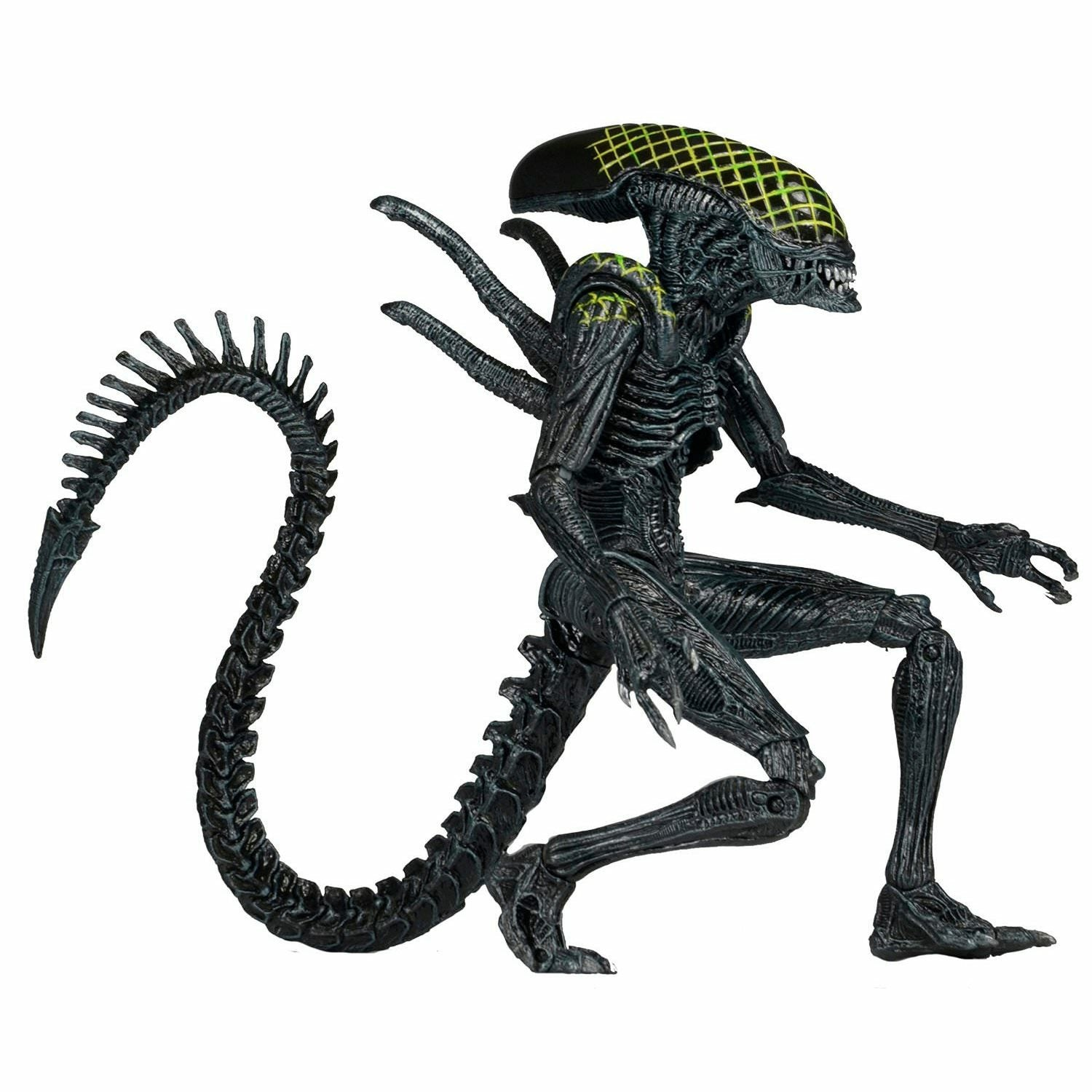 Alien vs. Predator Grid Alien Action Figure