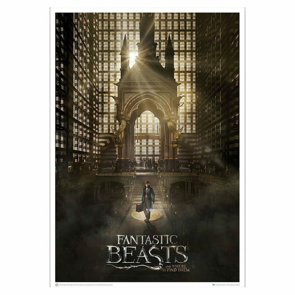 Fantastic Beasts and Where to Find Them Magical Congress Art Print Poster