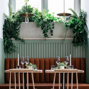 Restaurant / Workspace Plant Design + Install