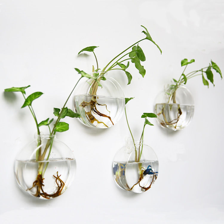 Set of 4 Wall Hanging Hydroponic Planters