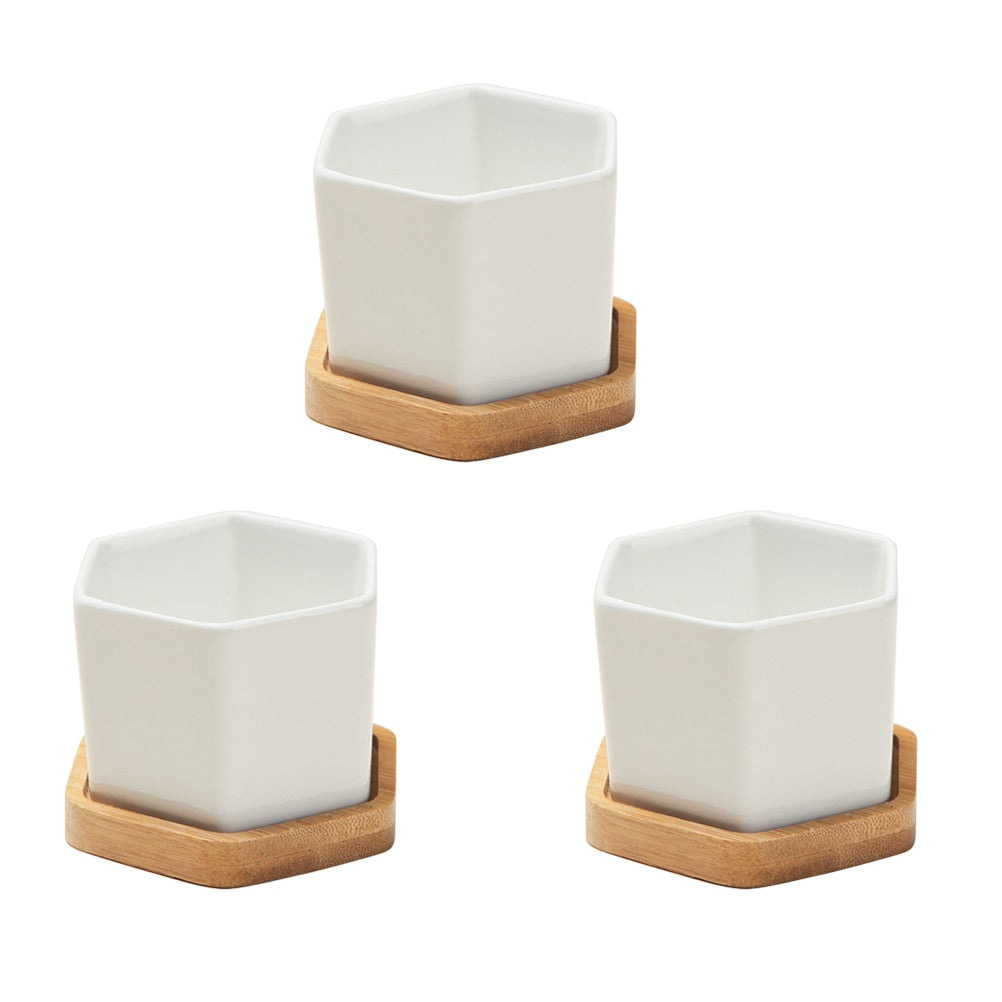 Set of Small White Ceramic Hexagonal Succulent Pots + Trays