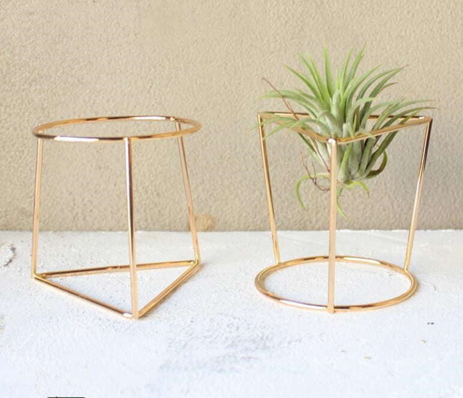 2 Tabletop Air Plant Stands