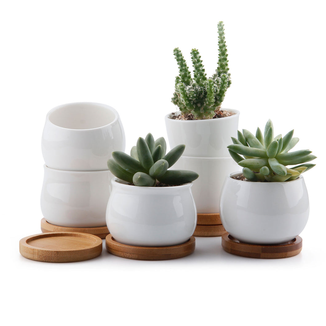 4 Simple Ceramic/Bamboo Succulent Pots