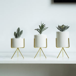 3 Ceramic Planters with Iron Stand