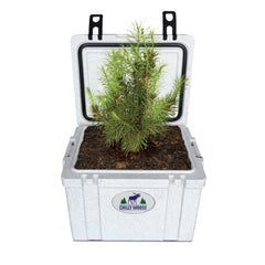 Chilly Moose 25L Chilly Ice Box cooler with a tree planted inside