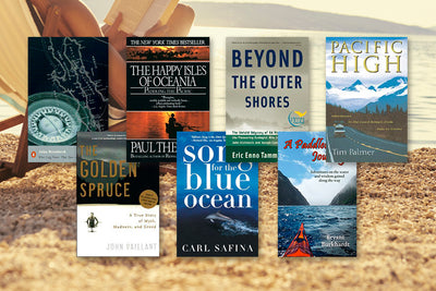 7 Beach Reads of a Different Sort