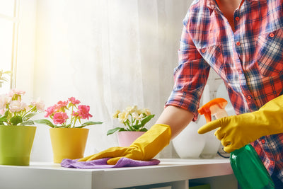 5 Spring Sprucing Tips for Your Home