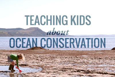 6 Ways to Teach Your Kids About Ocean Conservation