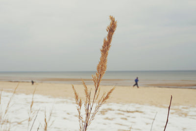 Ways to Enjoy the Beach in Winter