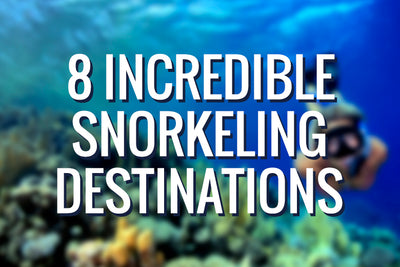 8 Incredible Snorkeling Destinations