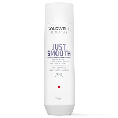 Goldwell Dualsenses Just Smooth Taming Shampoo 300ml