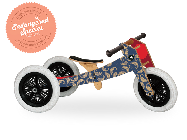 Wishbone Bike Pangolin 3in1