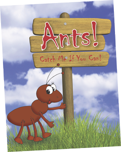 Ants Board Game