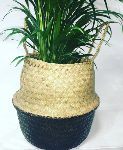 Seagrass Bi Colour Basket