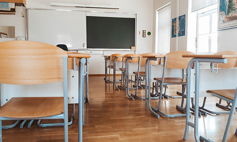 How to Eliminate Pests and Bugs at Schools