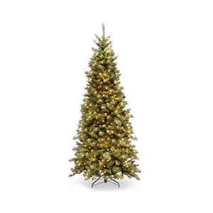 Christmas Trees 6 Feet