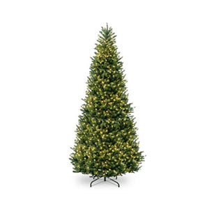 Christmas Trees 8 Feet
